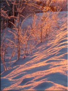 Nov17th_004_SnowRC