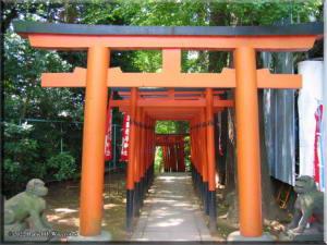 Ueno03_Shrine02RC