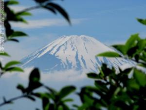 June12_Owakudani39_FujiRC.jpg