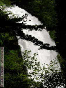 Jun12_240_Oze_SanJou_WaterfallRC