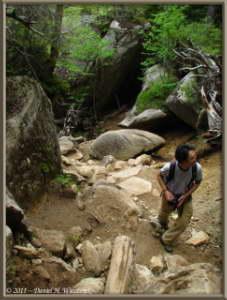 June24_052_MtMizugakiClimb_Trail_KazuyaRC