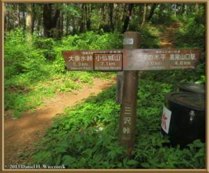 June01_13_MinamiTakao_Kobotoke_SignRC