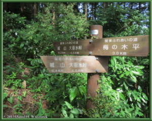 June01_15_MinamiTakao_Kobotoke_SignRC