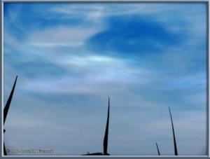 May27_07_WildHorseWind_SolarFacilityRC