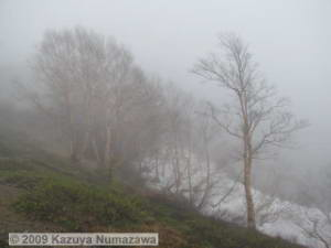May30th_Kusatsu008_Shirane_Snow_CloudsRC.jpg
