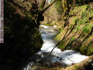 May03_IchiNoWaterfall_067_RC