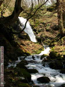 May03_IchiNoWaterfall_076_RC