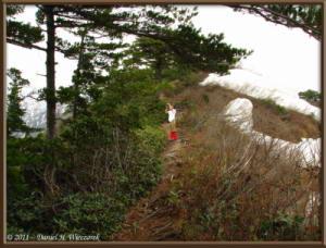 May03_074_Climbing_Kurate_yama_KazuyaRC