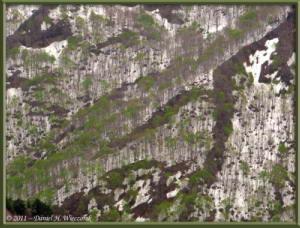 May03_076_Climbing_Kurate_yamaRC