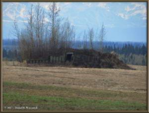 May9_17_Hike_NearHome_FieldRC