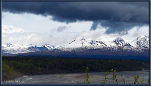 May24_15_AnchorageToFairbanks__DenaliSouthViewpointRC