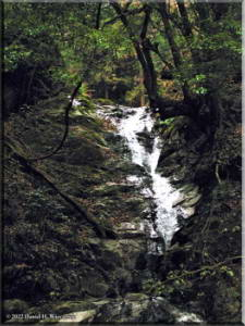 WhiteRockWaterfall03aRAWRC.jpg