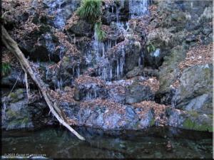 Feb04_Kawanori_Ice04RC.jpg