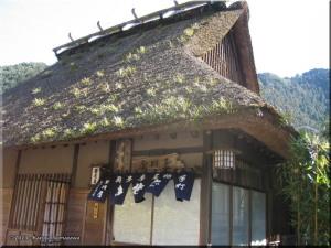 Feb8th_Sawai_Mitake_TamaRiver01_RestaurantRC.jpg