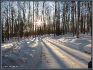 Feb07_4_SnowInTheYardRC