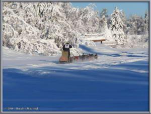 Feb3_26_YukonQuestStartRC