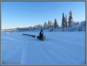 Feb3rd_004_YukonQuestRC