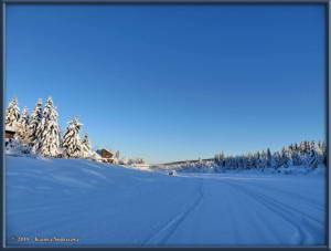 Feb3rd_007_YukonQuestRC