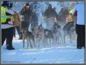 Feb3rd_058_YukonQuestRC