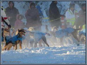 Feb3rd_073_YukonQuestRC