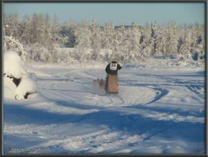 Feb3rd_157_YukonQuestRC