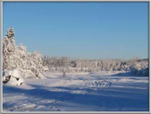 Feb3rd_161_YukonQuestRC