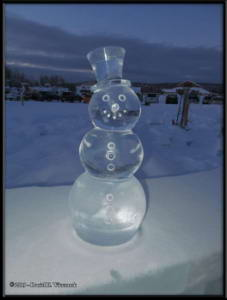 Feb19_49_IceParkRC