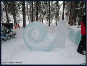 Feb20_08_IceParkRC