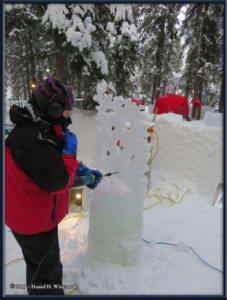 Feb22_19_IceParkRC