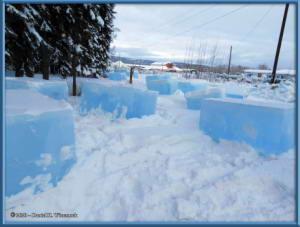 Feb22_31_IceParkRC