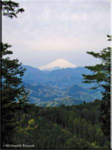 Apr22_ICchoDaira_Fuji05RC.jpg