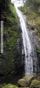 Apr13_Mazukari_AyaWaterfall06_07RC.jpg