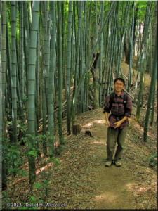 Apr05_AkigawaHills_Bamboo_KazuyaRC.jpg
