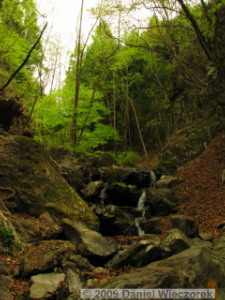 Apr24_MtNarukami027_SceneryRC.jpg