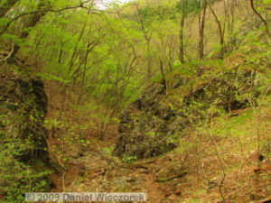 Apr24_MtNarukami081_SceneryRC.jpg