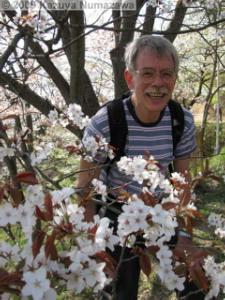 April10th_TamaForestScienceGarden190_CherryBlossomsRC.jpg