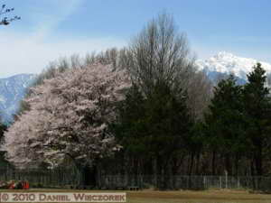 Apr18_Nagasaka_MountainScenery_033_RC