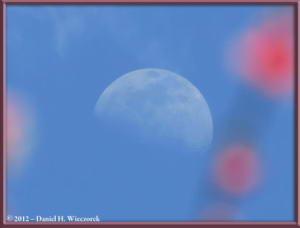 Apr01_137_Kogesawa_Moon_PlumBlossomsRC
