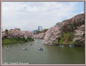 Apr06_92_ChidorigafuchiMoatCherryBlossomsRC