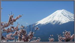 Apr29_168_KawaguchiLake_KachikachiRopewayTop_RC