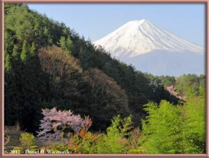 Apr29_34_35_36_Fused_KawaguchiLake_Scenery_Fuji_RC