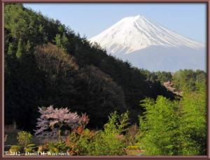 Apr29_37_KawaguchiLake_Scenery_Fuji_RC