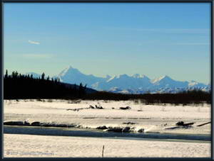 Apr03_01Adj_TripToDelta_AlaskaRangeRC