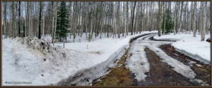 Apr17_01_02_AutoPano_DrivewaySnowRC