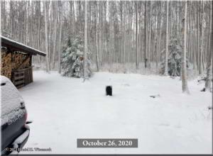 Oct26_1_Snow_At_HomeRC