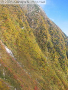 08Oct_Komagatake_Ropeway_Down_Ride05RC.jpg