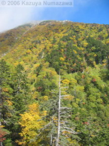 08Oct_Komagatake_Ropeway_Down_Ride14RC.jpg