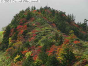 Oct11_RopewayBottom_Kusatsu21_ColorsRC