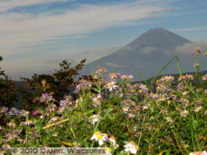 Oct23_038_Owakudani_MtFuji_RC
