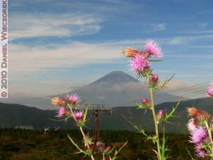 Oct23_044_Owakudani_MtFuji_RC